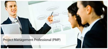 PMP – Project Management Framework and the Project Management Professional